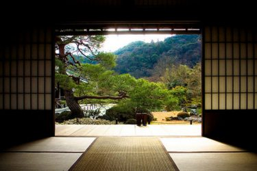 dojo_nature_indoor_green_hd-wallpaper-537477